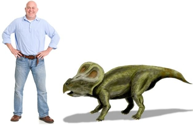 Protoceratop compared to a man