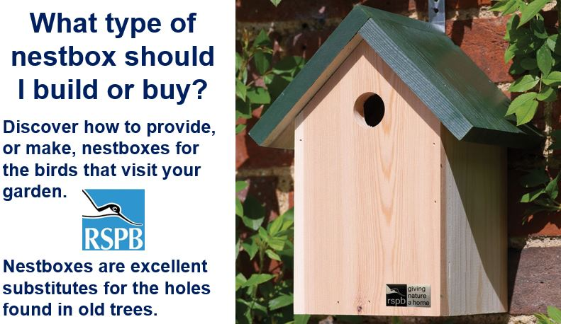 What type of nestbox should I make or buy