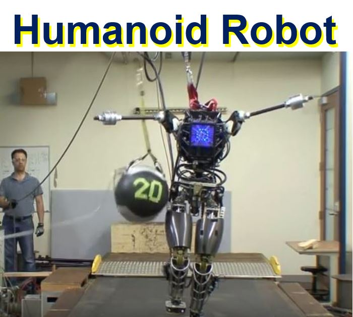 Atlas the humanoit robot