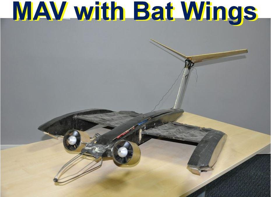 MAV with bat like wings