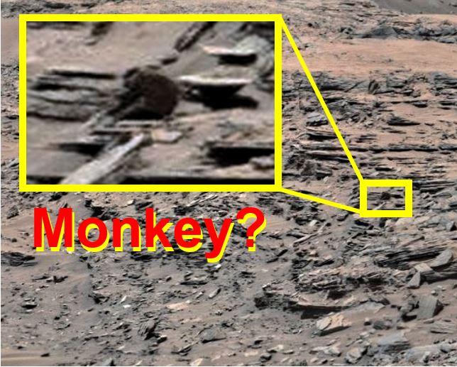 Monkey on Mars
