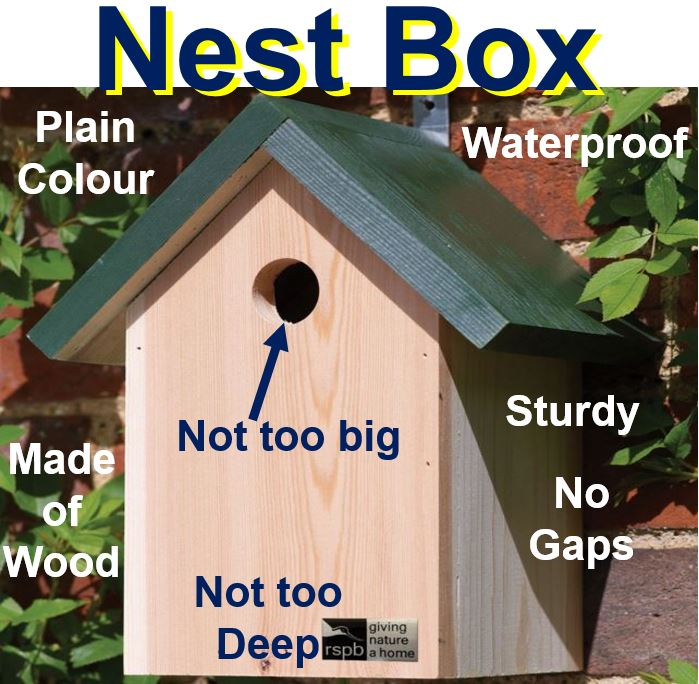 Nest boxes need to be safe