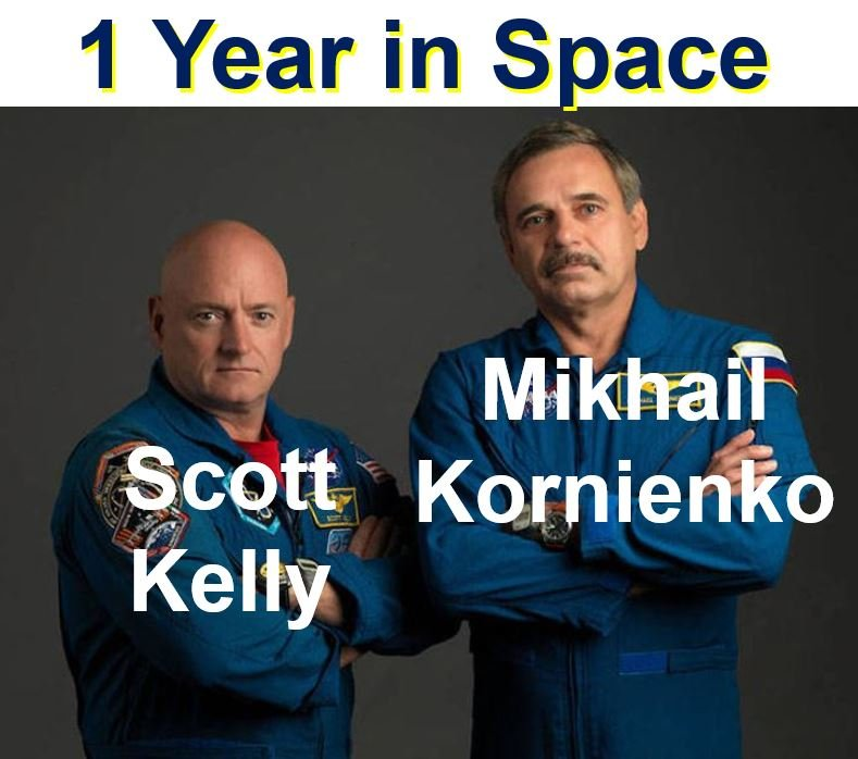 One year in space Scott Kelly and Mikhail Kornienko