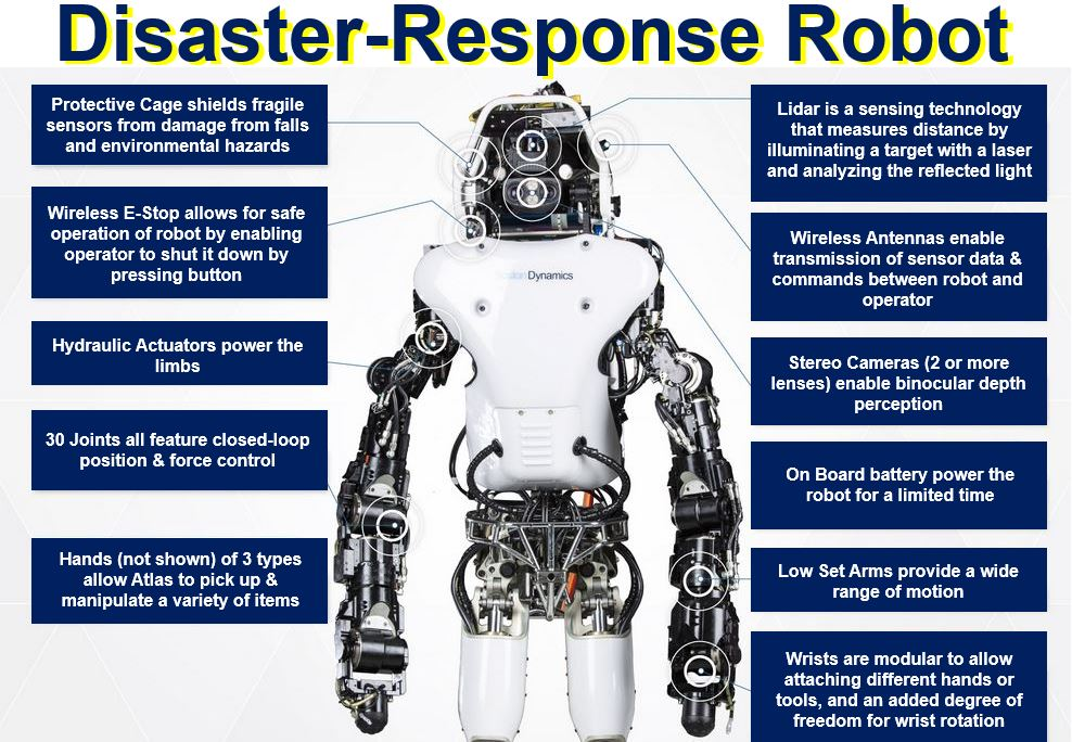 Search and Rescue Robot