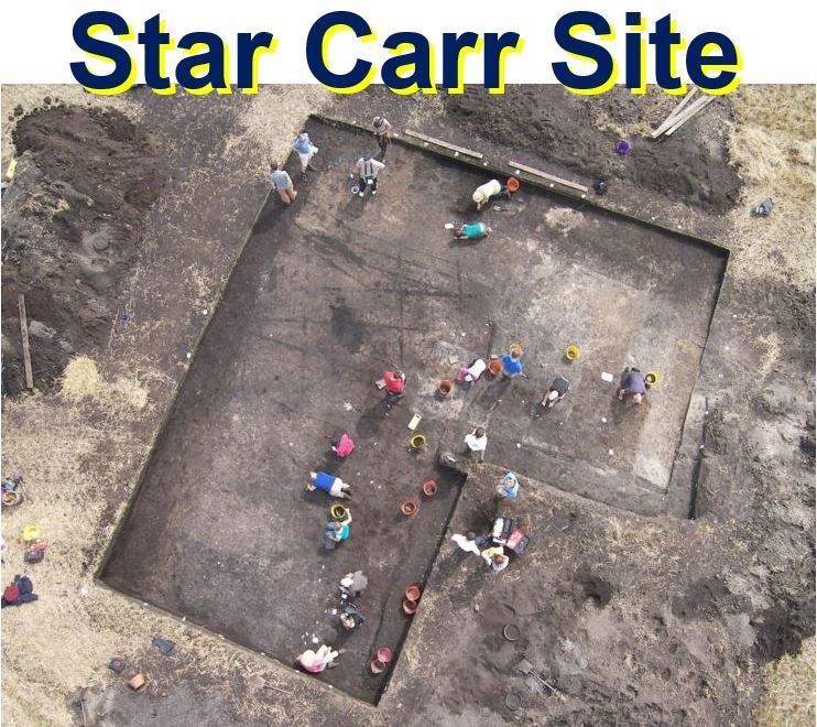Star Carr excavation site