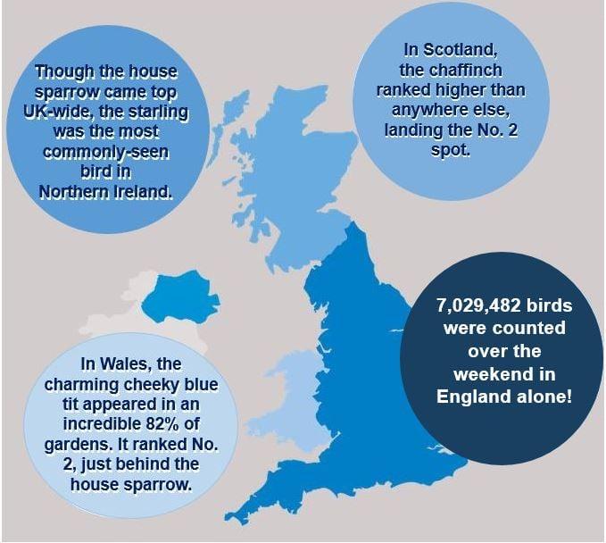 Bird Populations across the United Kingdom