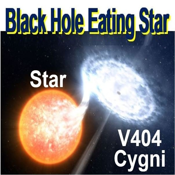 Black hole eating a star orbiting it