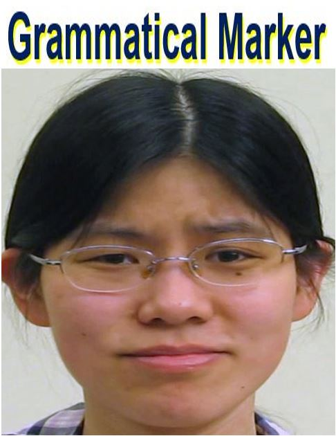 Grammatical Marker