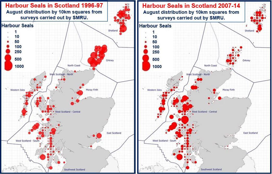 Harbour Seal distribution Scotland