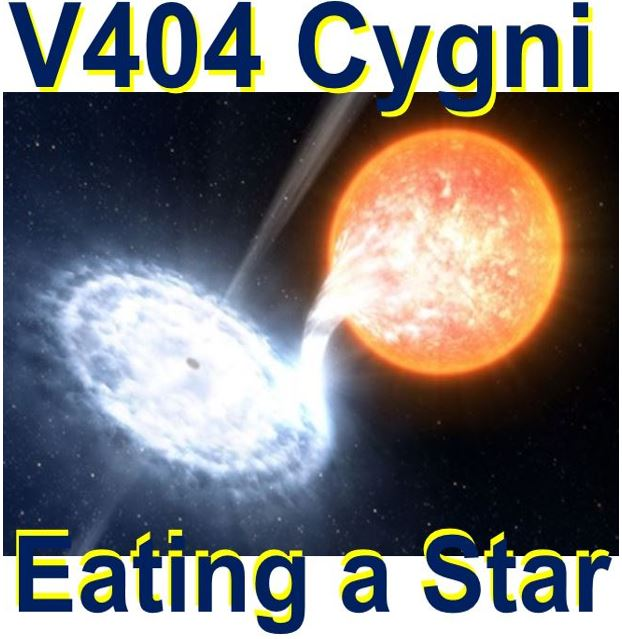 V404 Cygni devouring a companion star