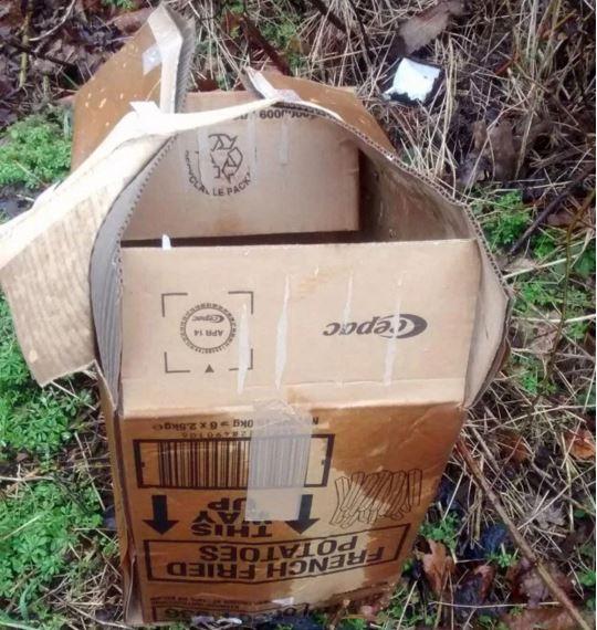 Box had no airholes