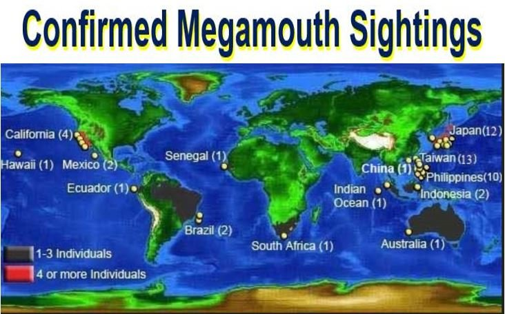 Confirmed megamouth sightings