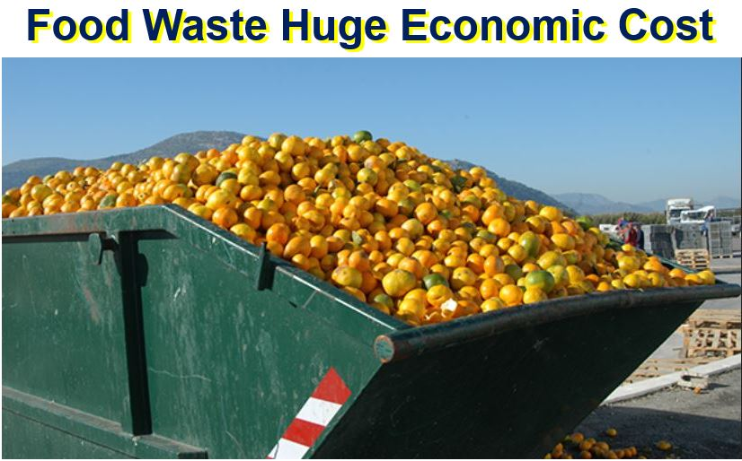 Food waste economic cost
