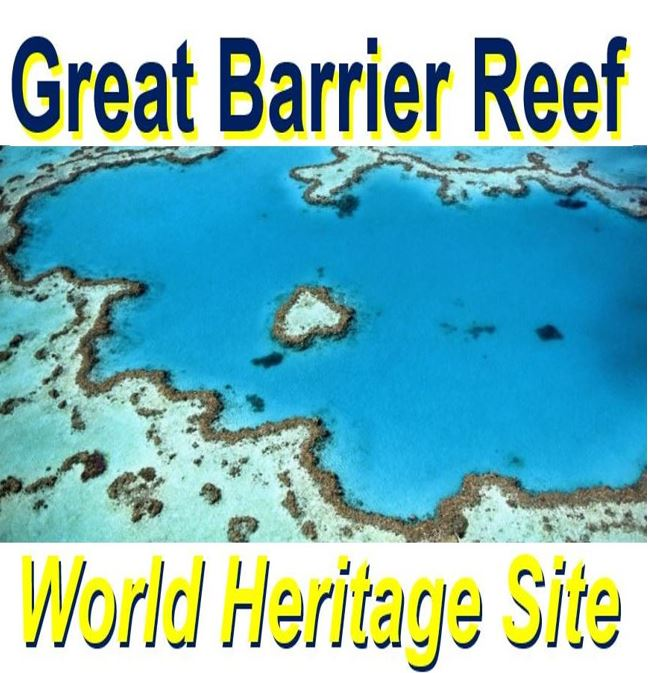 Great Barrier Reef coral reef bleaching
