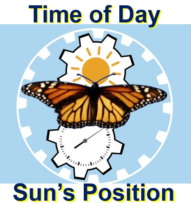 Monarch butterfly integrates time of day with Sun position