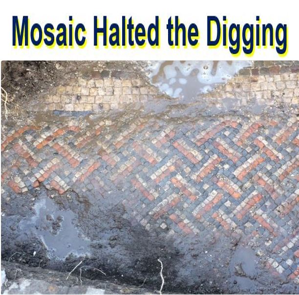 Mosaic halted the digging
