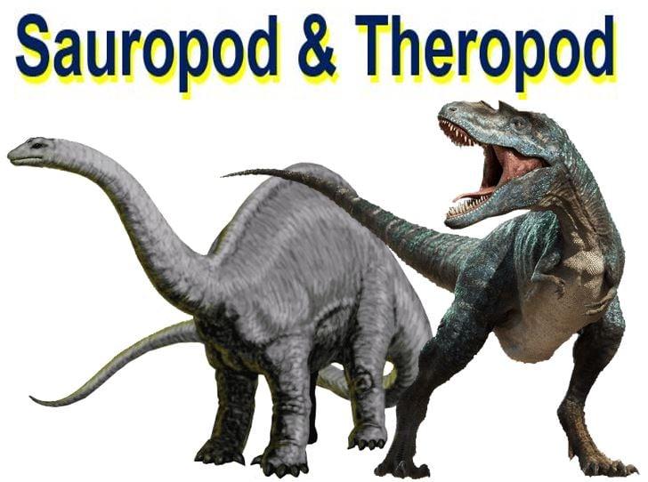 Sauropod and Theropod