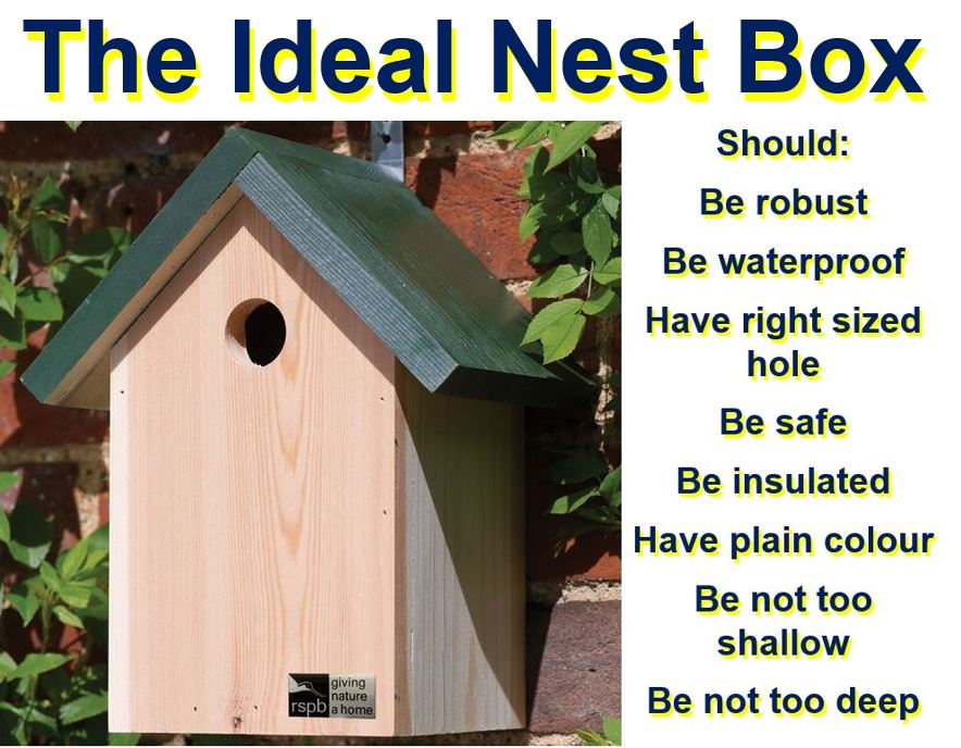 The ideal nest box