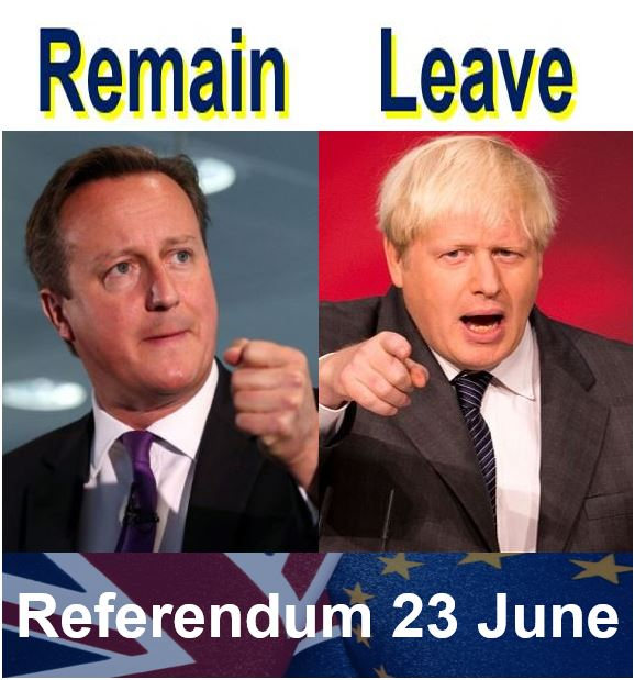 EU referendum remain and leave leaders