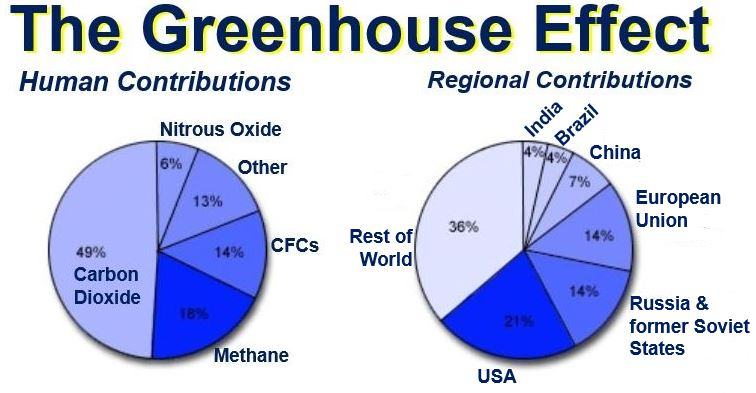 Greenhouse effect human and regional contributions