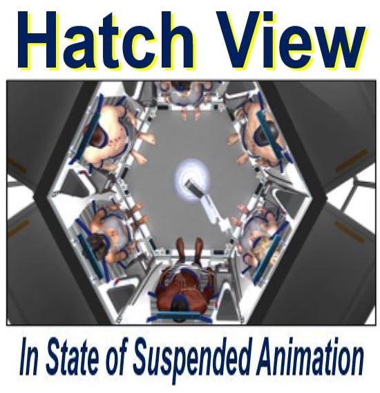 Hatch view of Sleep chamber