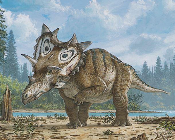 Judith the horned dinosaur sketch