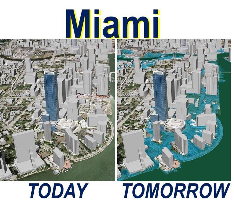 Miami coastal flooding