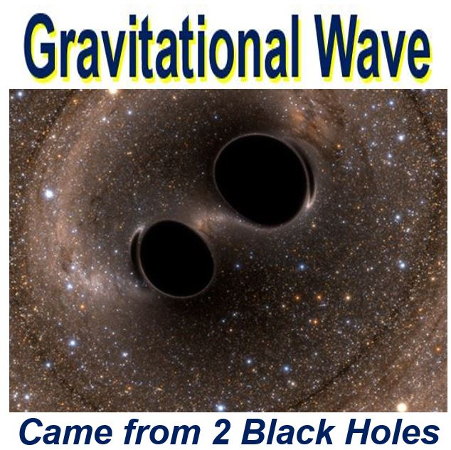 Special Breakthrough Prize in Fundamental Physics for gravitational wave detection