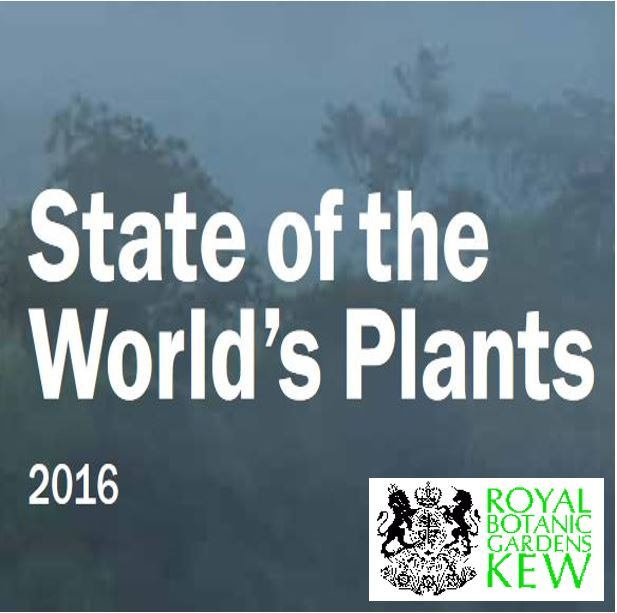 State of world plant species