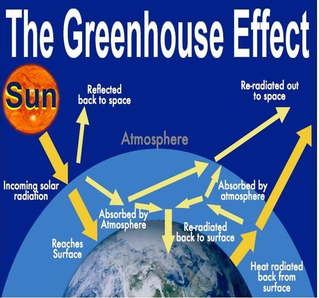 What is the greenhouse effect market business news for Green housse effect