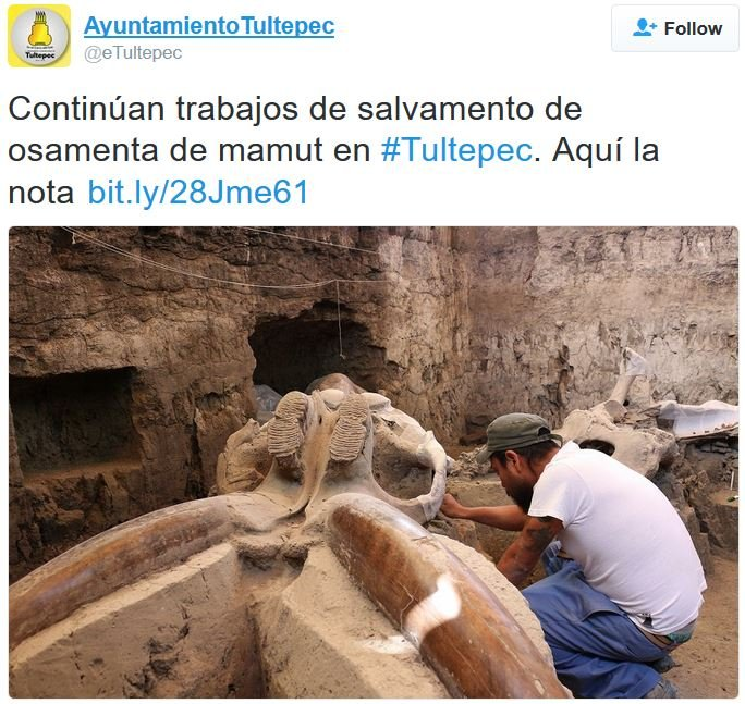 Ayuntamiento Tultepec reports on mammoth recovery progress