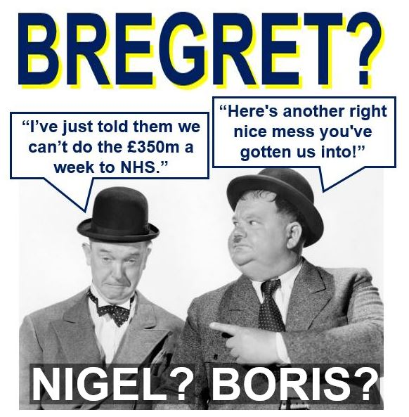 Bregret regreting voting for Brexit