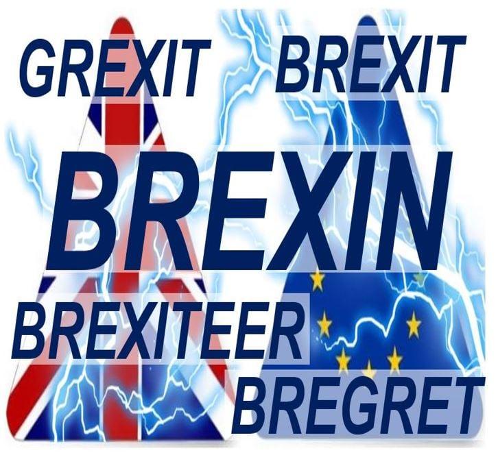 Brexin Brexit Grexit Bregret Brexiteer