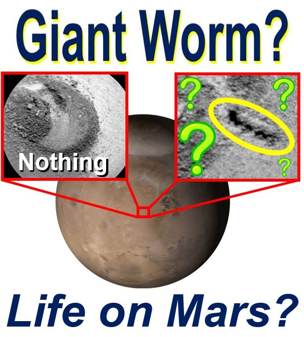 Giant worm on Mars alien life proof say enthusiasts