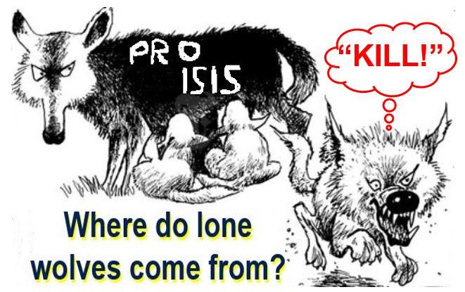 Lone wolf terrorists brainwashed online