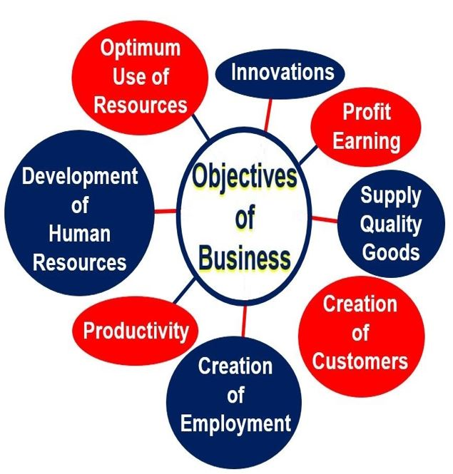 What is a Business objective