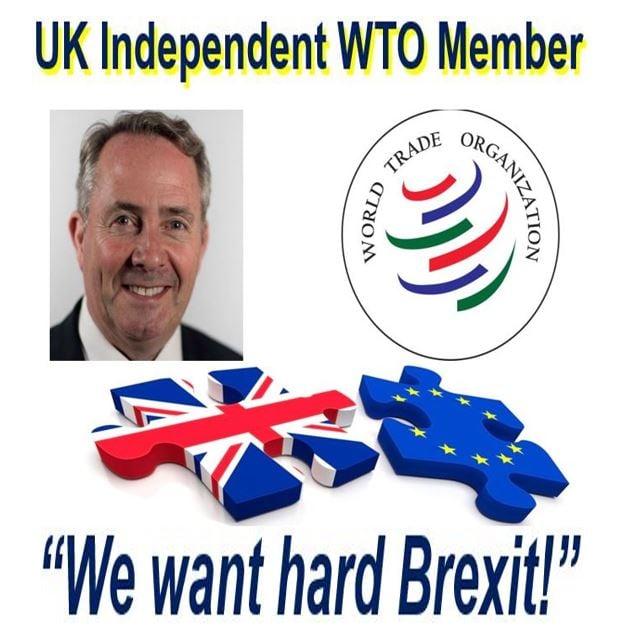 UK seeks independent WTO membership