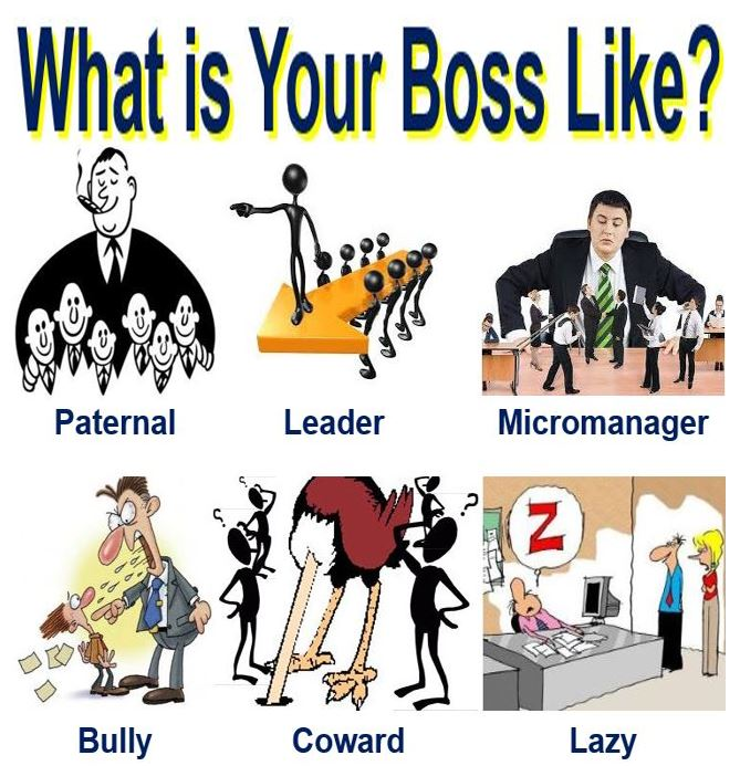 What is your boss like?