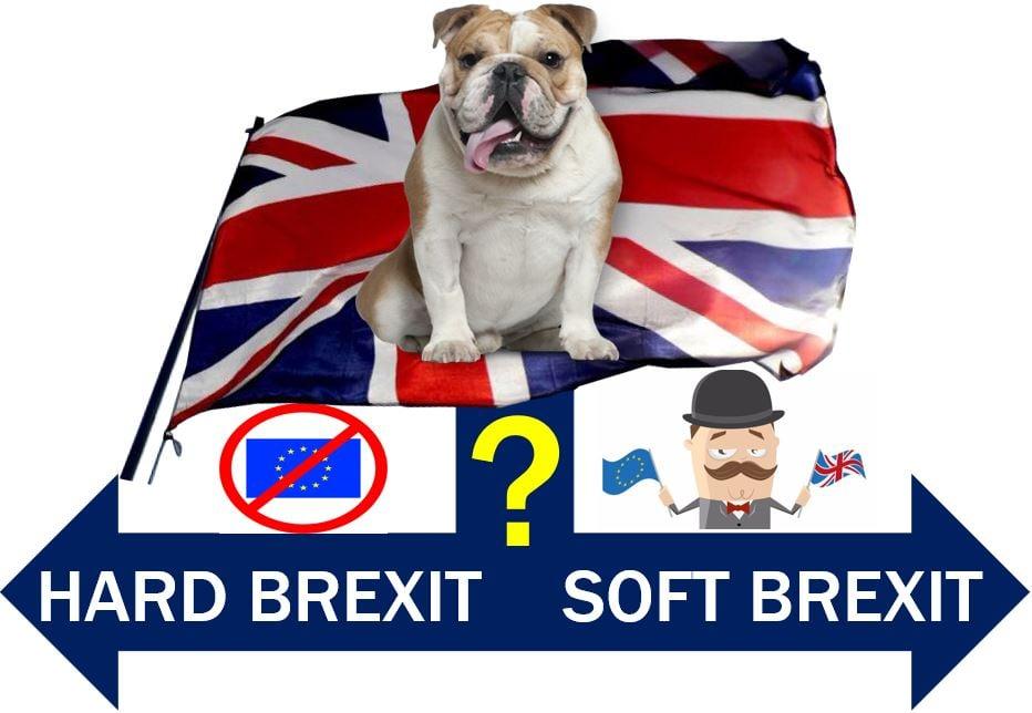 Hard Brexit or Soft Brexit fork in road