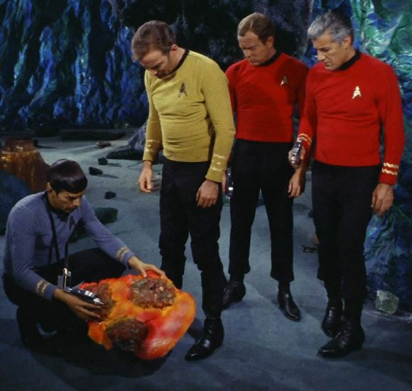 Horta the silicon based life form in Star Trek episode