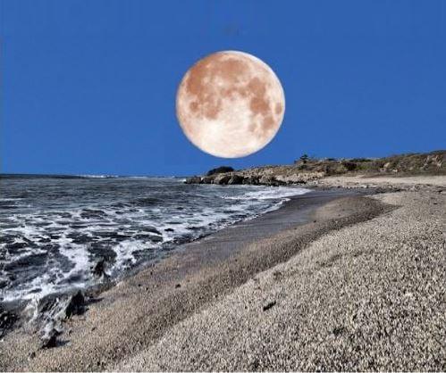 When near the horizon Moon likes like a Supermoon