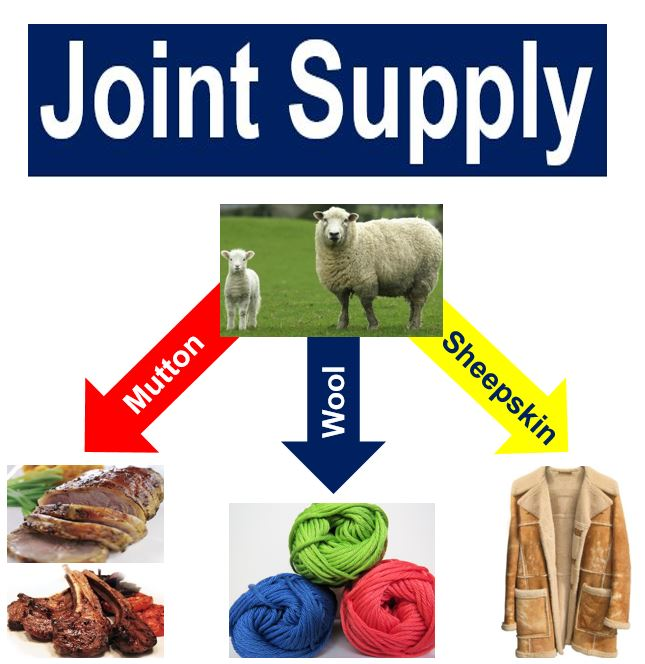 Joint supply sheep