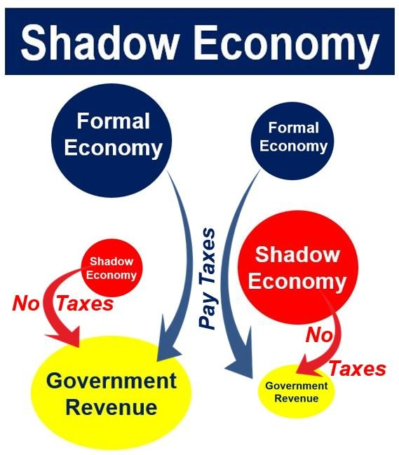 Shadow economy and government revenue