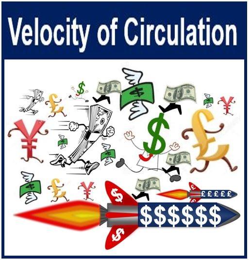 Velocity of circulation image