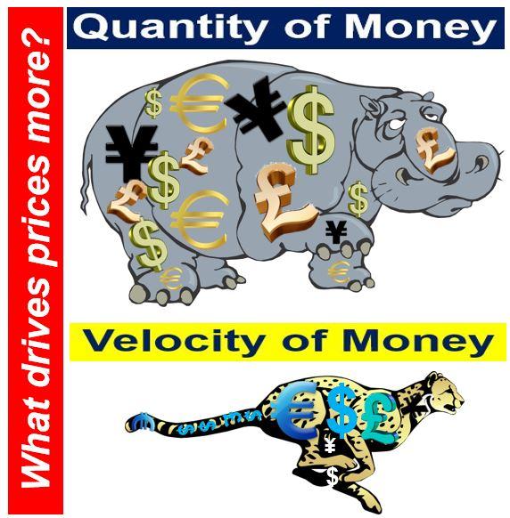 Velocity of circulation vs. quantity of money