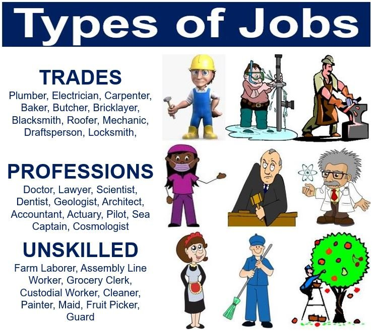 what is a job  types of jobs