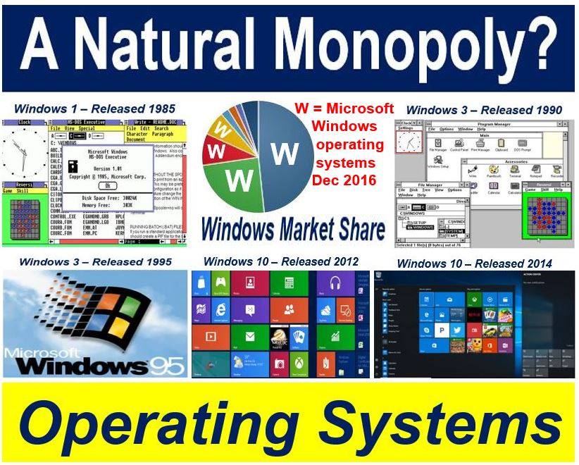 What Is A Natural Monopoly  Definition And Meaning
