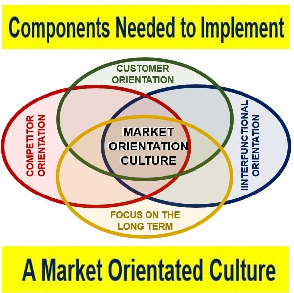 Components Market Orientation Culture