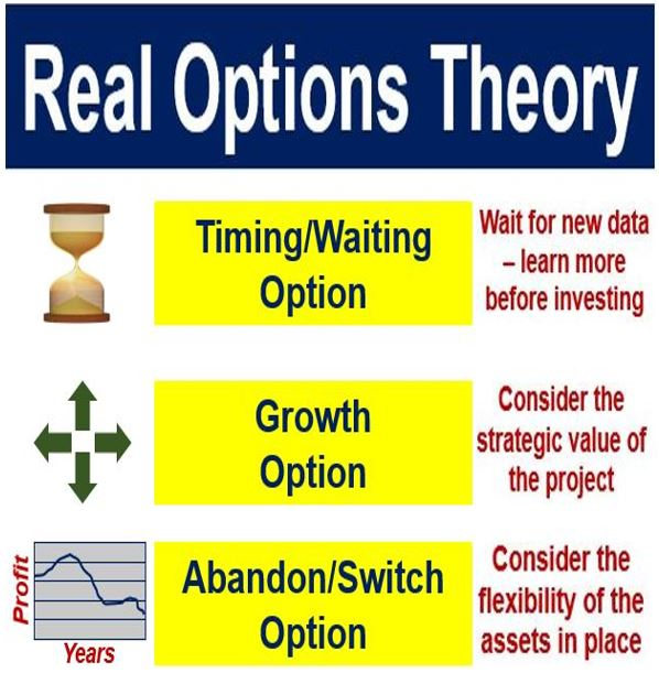 Real Options Theory - Timing growth abandon switch