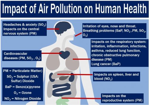 essay on pollution and its effects on human life Essay on water pollution: types, causes, effects and causes of ground water pollution: a greater threat to human life comes from effects of water pollution.